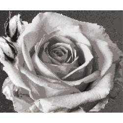 Панно Роза
